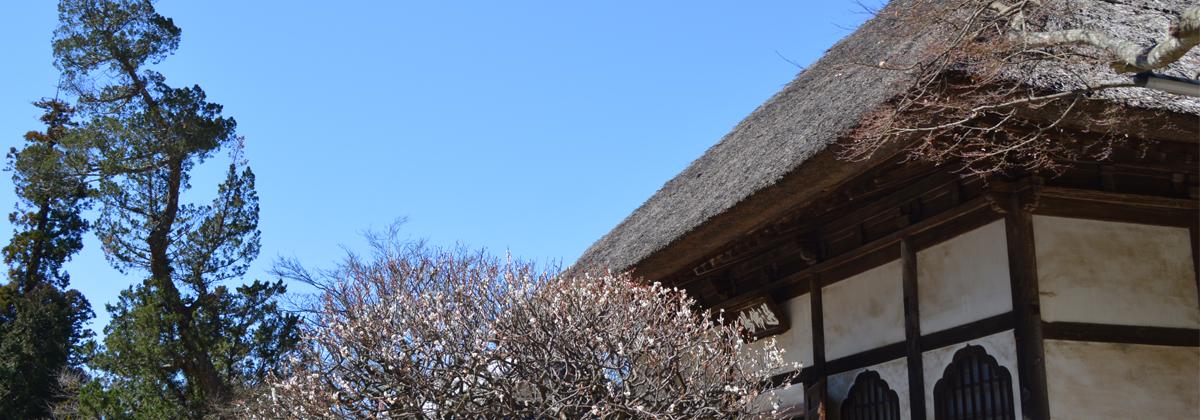 鎌倉アート&カルチャーMAP